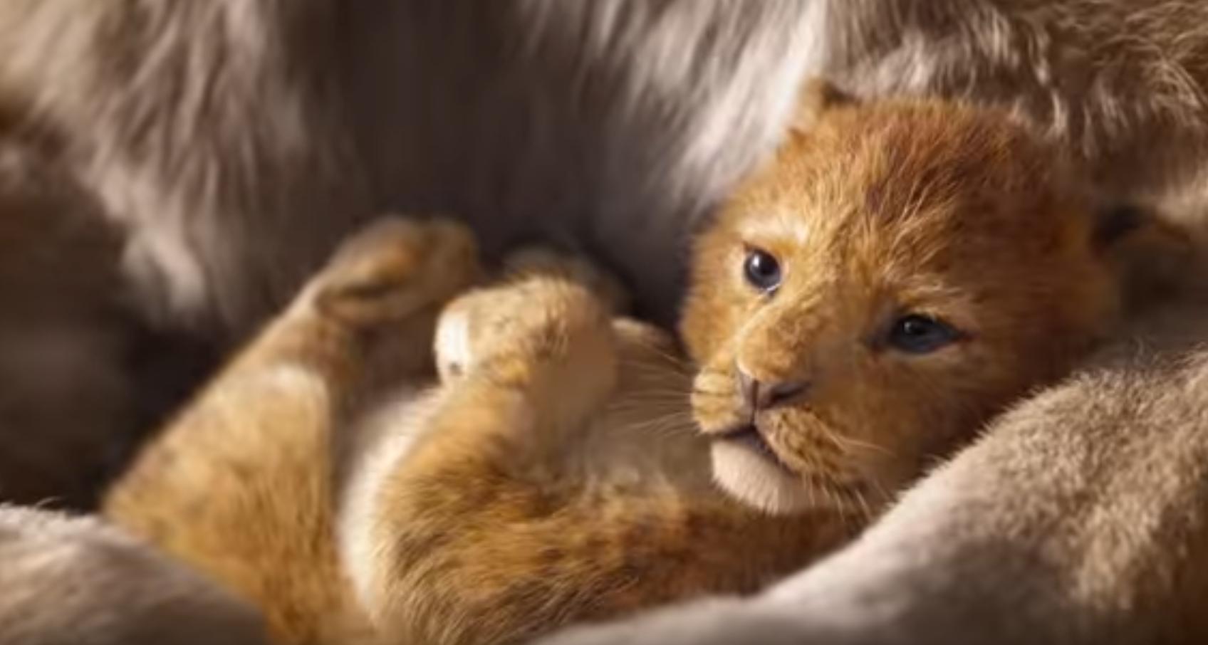 trailer ufficiale leone