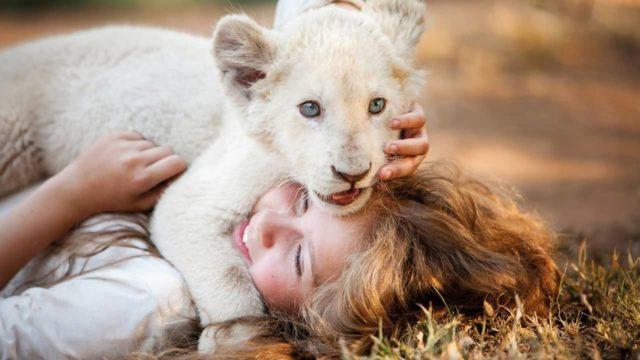Mia leone ambientazione