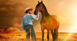 The Rider - Il sogno di un cowboy streaming ita