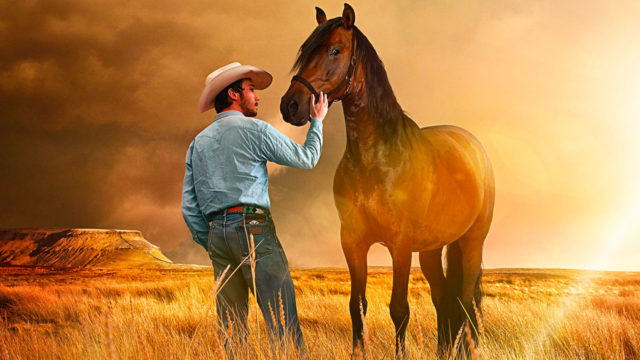 The Rider - Il sogno di un cowboy streaming ita